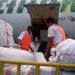 Cara Cek Cargo Citilink Via HP